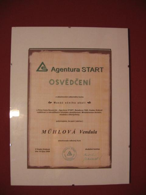 Manikúra odborný kurz francouzská manikúra pomocí uv gelu 2006